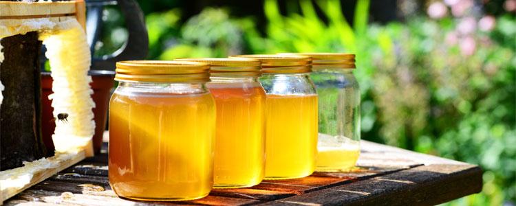 honey-352205