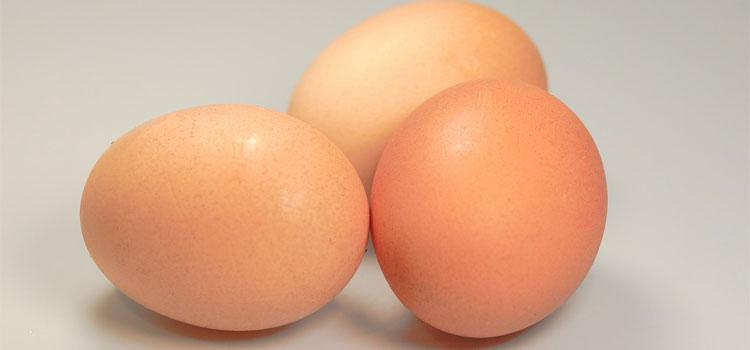 eggs-541763_1280