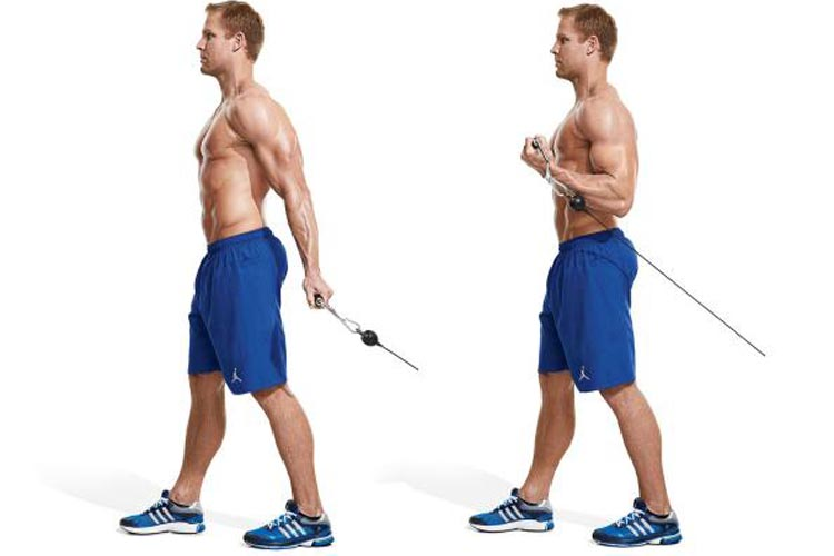 1.-behind-the-back-cable-curl-20-best-forearm-exercises