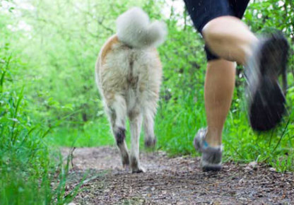 Five Reasons to Run With Your Furry Friend